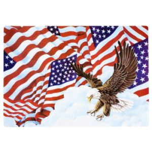 Patriotic Decorations Patriotic Paper Plates And Napkins