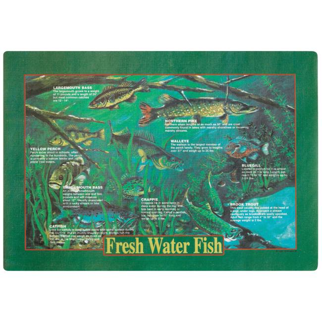 Fresh Water Fish Placemats  sc 1 st  Party at Lewis & Fresh Water Fish Placemats: Party at Lewis Elegant Party Supplies ...