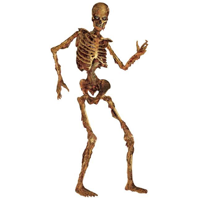 jointed 6foot skeleton
