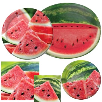 Summer Seeds Watermelon Paper Plates & Napkins